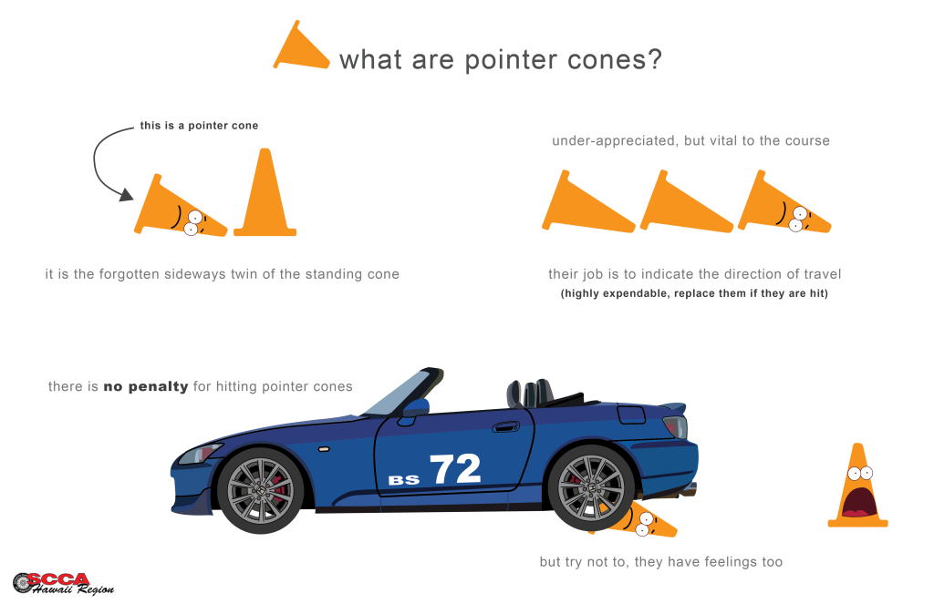 pointer cones-01